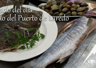 EverestBi_Pescado-del-dia-del-puerto-de-Laredo