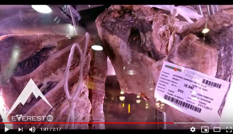 Carne de calidad Everest Bi